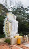 在Ta古芝山,越南的Buddah雕象 免版税图库摄影