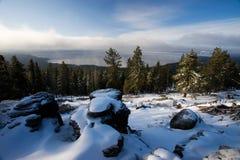 在Tahoe湖的北部岸,内华达/Californi的斯诺伊4月早晨 免版税图库摄影
