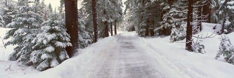 在Tahoe湖附近的冬天路 免版税库存图片