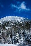 在Tahoe湖附近的山 库存图片