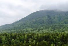 在taiga的云彩在西伯利亚 库存照片