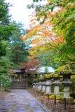 在Taiyuin寺庙,日光日本的秋叶 图库摄影