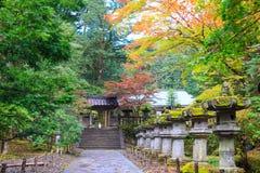在Taiyuin寺庙,日光日本的秋叶 库存照片