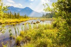 在takakkaw附近的星云森林落, yoho国家公园不列颠哥伦比亚省,加拿大 免版税库存图片