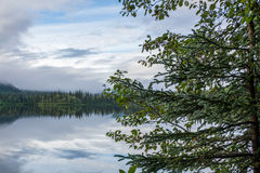 在Talkeetna阿拉斯加附近的湖 免版税库存图片