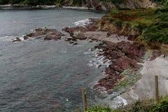 在Talland海湾的岩石岸 库存图片
