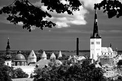 在Tallin的八个塔。 图库摄影