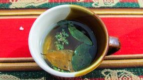 在Taquile海岛上的秘鲁清凉茶 免版税图库摄影