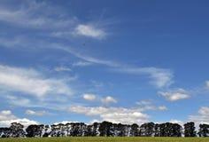 在Tarrawara的风景 图库摄影
