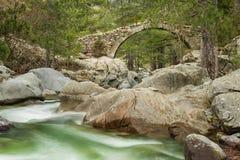在Tartagine河的热那亚人的桥梁在可西嘉岛 免版税库存照片
