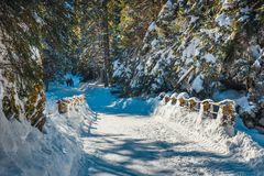 在Tatra山的冬天 库存图片