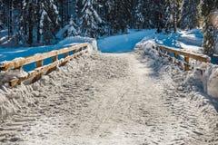在Tatra山的冬天 免版税图库摄影