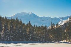 在Tatra山的冬天 免版税库存图片