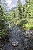 在Tatra山的山小河Krupa,斯洛伐克 库存图片