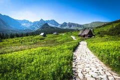 在Tatra山的Hala Gasienicowa (Valey Gasienicowa)在Zakopa 免版税库存图片