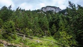 在Tatry山的Koscieliska谷 库存照片