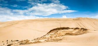 在Te Paki储备的沙丘 库存照片