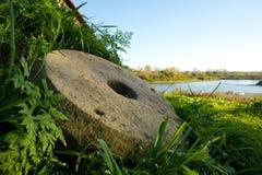 在Teletskoye湖的葡萄酒磨石 免版税图库摄影