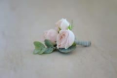 在tenderless钮扣眼上插的花,特写镜头的罗斯芽 免版税库存图片