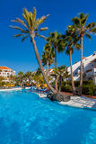 在Tenerife海岛的水池 免版税图库摄影