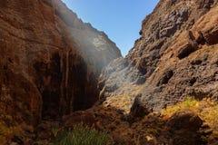 在Tenerife -金丝雀的著名峡谷Masca 免版税库存图片