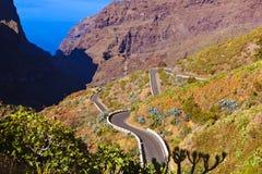 在Tenerife -金丝雀的著名峡谷Masca 免版税库存照片