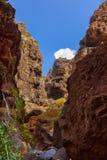 在Tenerife -金丝雀的著名峡谷Masca 库存照片