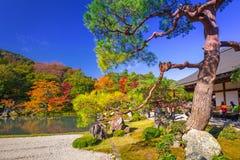 在tenryu籍寺庙湖的秋天  库存照片