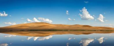 在tha湖的4月领域在米斯克附近 免版税库存照片