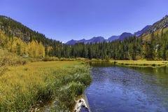 在The Creek的秋天颜色 库存图片
