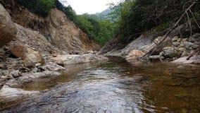 在The Creek边缘  免版税库存图片