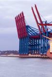 在ther集装箱码头的起重机 免版税图库摄影