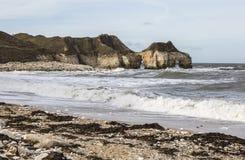 在Thornwick的剧烈的峭壁在Flamborough陆岬咆哮在约克夏,英国 图库摄影