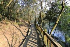 在tianzhushan山的木走道 库存照片