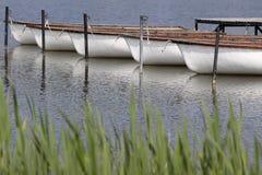在tihany附近的balaton湖 库存图片