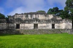 在Tikal,危地马拉的玛雅废墟 库存图片