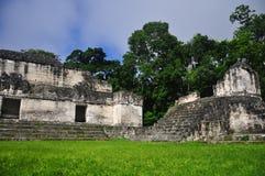 在Tikal,危地马拉的玛雅废墟 免版税库存照片