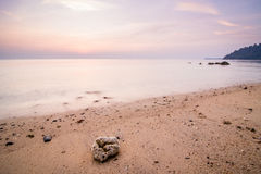 在Tioman海岛上的假期 当它是大浪时,五颜六色的风景可以几乎每天被察觉 免版税图库摄影