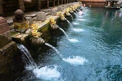 在Tirta Empul寺庙的巴厘语圣洁春天 库存图片