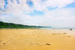 在Tofino附近的长滩在温哥华岛,不列颠哥伦比亚省,加拿大 库存图片