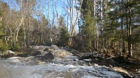 在Tohmajoki河的瀑布 股票视频