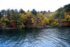 在Towada的秋天 免版税库存照片