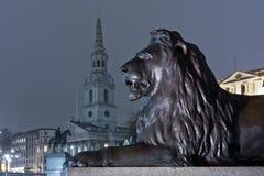 在trafalgar正方形的狮子 免版税库存照片