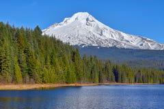 在Trillium湖反映的Mt敞篷 免版税图库摄影