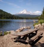 在Trillium湖的野餐 库存照片