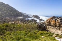 在Tsitsikamma国家公园,南非海岸的供徒步旅行的小道  图库摄影