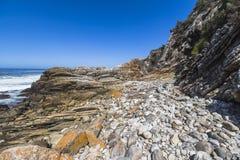 在Tsitsikamma国家公园,南非海岸的供徒步旅行的小道  免版税图库摄影