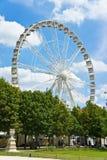 在Tuileries庭院的弗累斯大转轮,巴黎 图库摄影