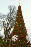 在tulancingo的圣诞节我 库存图片