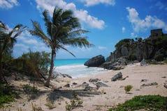 在Tulum废墟的海滩在墨西哥 免版税库存照片